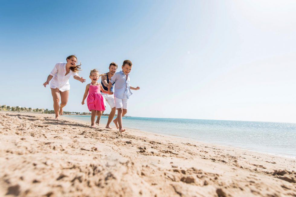 Top 5 Family-Friendly Activities Near Shearwater