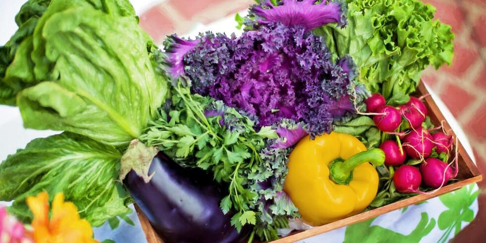 10 Tips to Keep Produce Fresh Longer