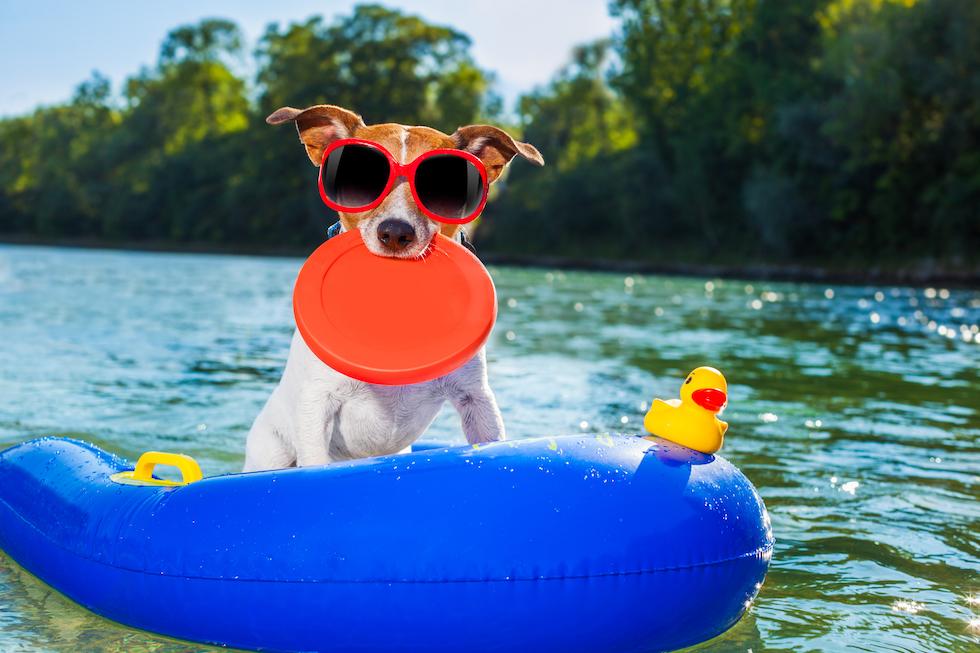 Summer Fun at Legacy Jordan Lake